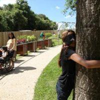 Jardim-sensorial (1)